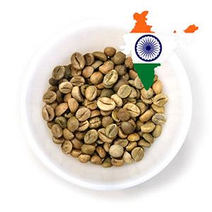 Робуста зелёный кофе из Индии